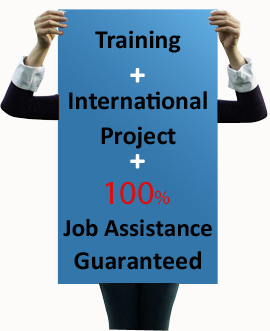 Training Certification 100%job Assistance
